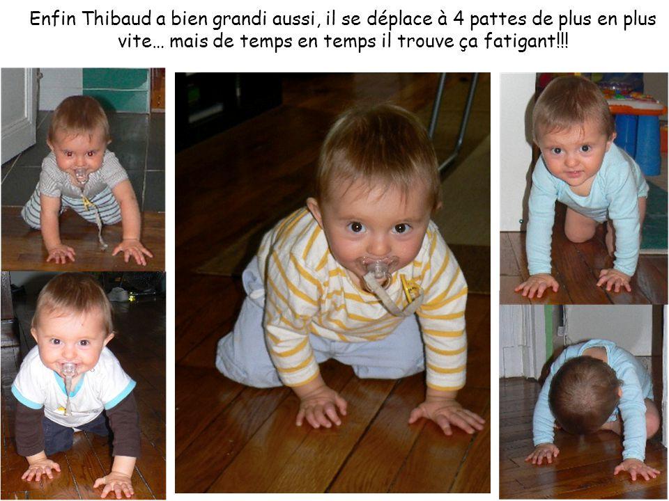 Enfin Thibaud a bien grandi aussi, il se déplace à 4 pattes de plus en plus vite… mais de temps en temps il trouve ça fatigant!!!