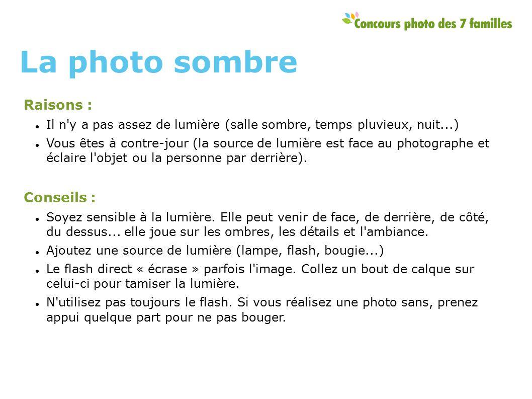 Raisons : Il n y a pas assez de lumière (salle sombre, temps pluvieux, nuit...) Vous êtes à contre-jour (la source de lumière est face au photographe et éclaire l objet ou la personne par derrière).