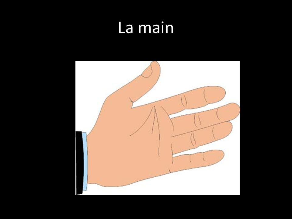 Le doigt L'ongle