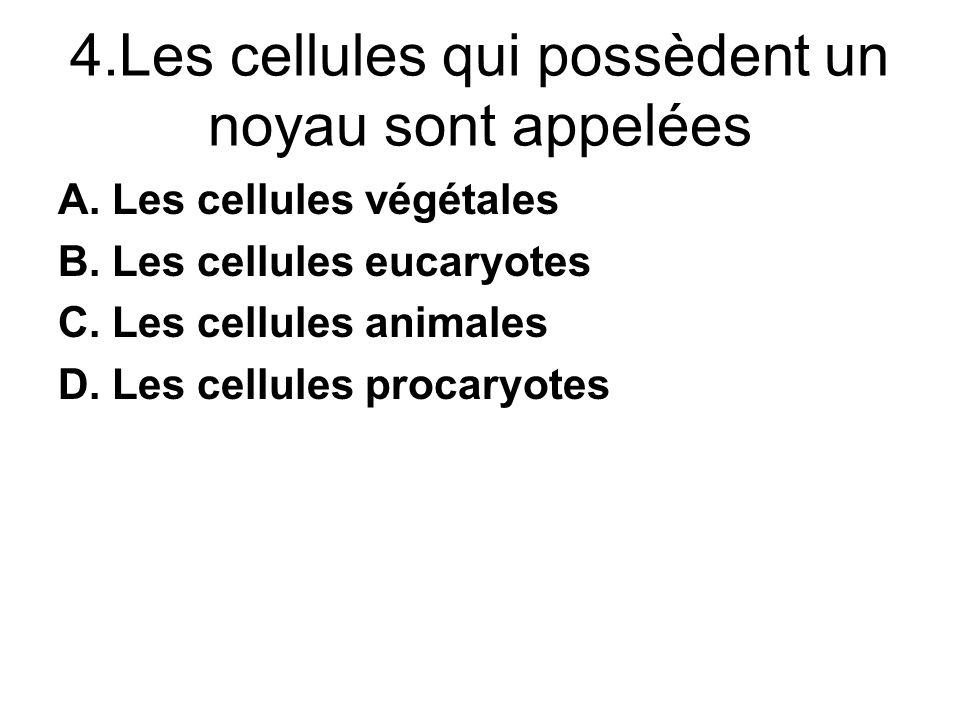 4.Les cellules qui possèdent un noyau sont appelées A.Les cellules végétales B.Les cellules eucaryotes C.Les cellules animales D.Les cellules procaryotes