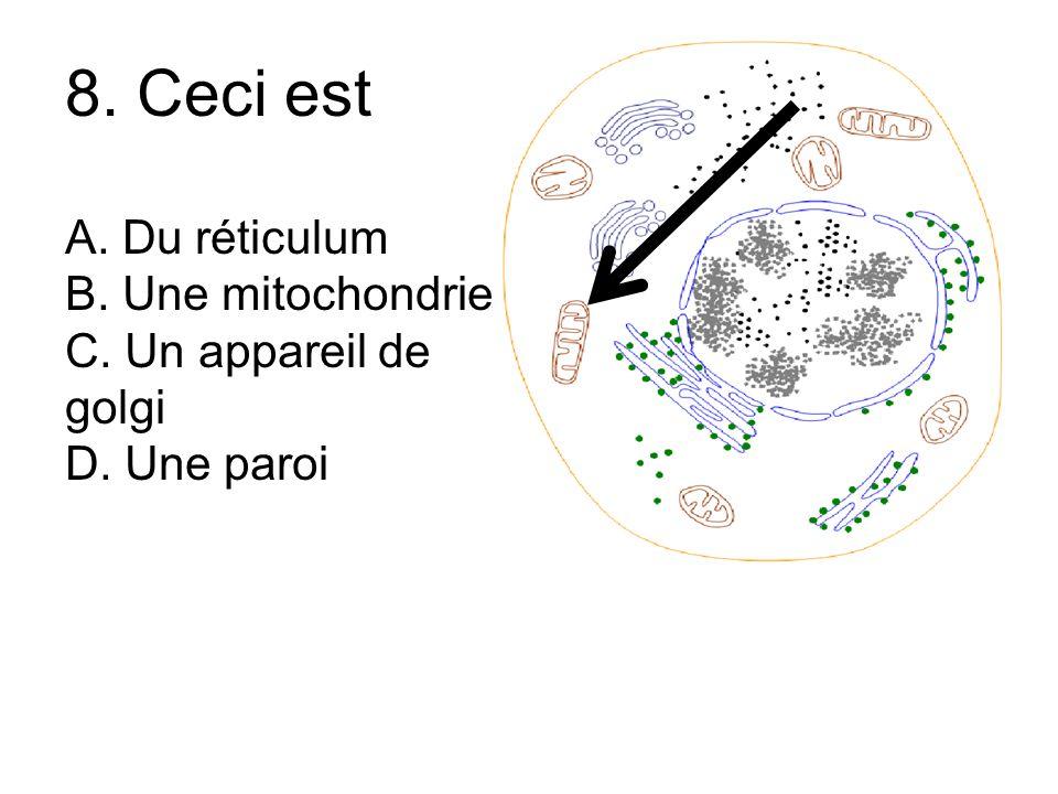 8. Ceci est A. Du réticulum B. Une mitochondrie C. Un appareil de golgi D. Une paroi