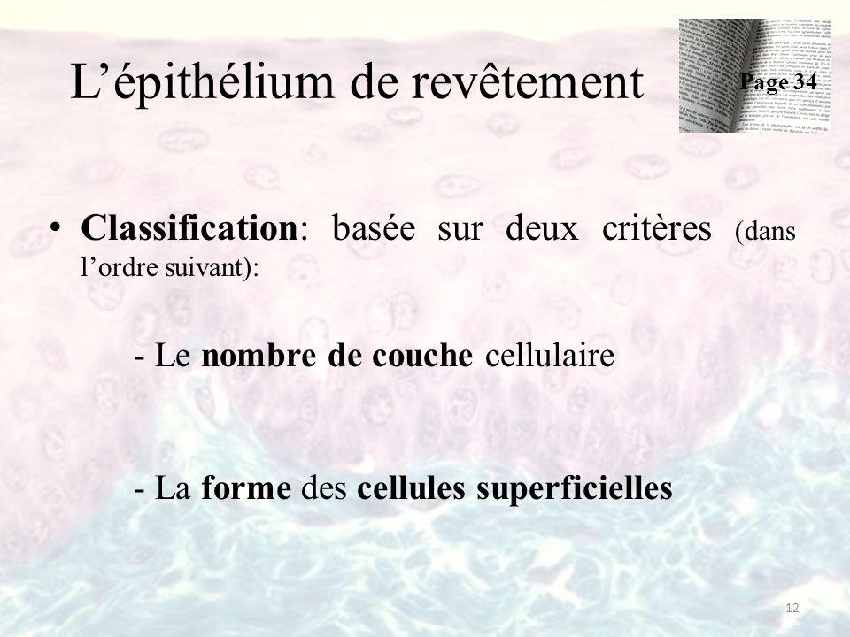 L'épithélium de revêtement Classification: basée sur deux critères (dans l'ordre suivant): -Le nombre de couche cellulaire -La forme des cellules superficielles Page 34 12