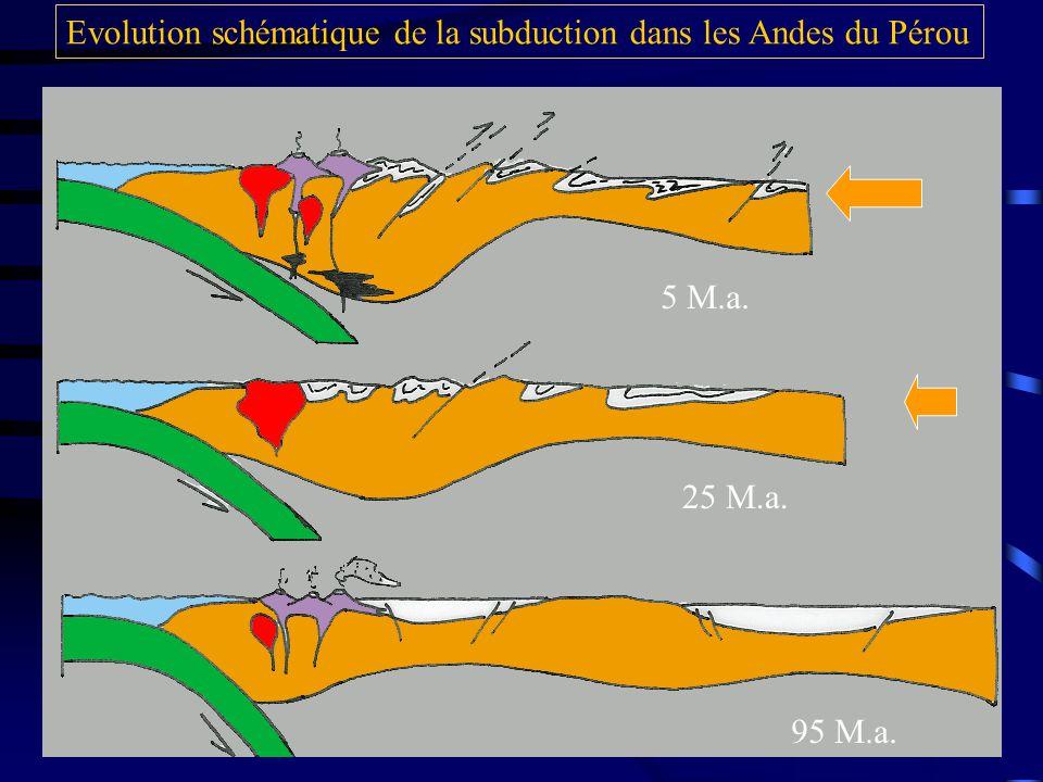 5 M.a. 25 M.a. 95 M.a. Evolution schématique de la subduction dans les Andes du Pérou
