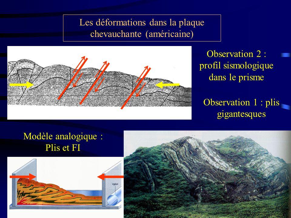 Observation 2 : profil sismologique dans le prisme Les déformations dans la plaque chevauchante (américaine) Observation 1 : plis gigantesques Modèle analogique : Plis et FI