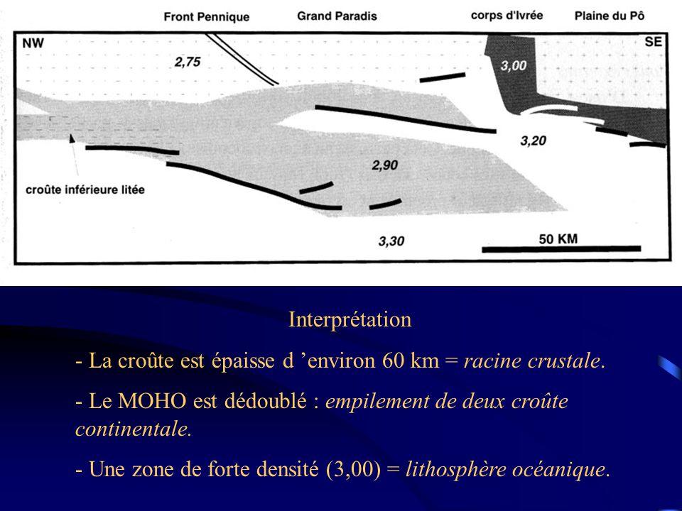 Interprétation - La croûte est épaisse d 'environ 60 km = racine crustale.