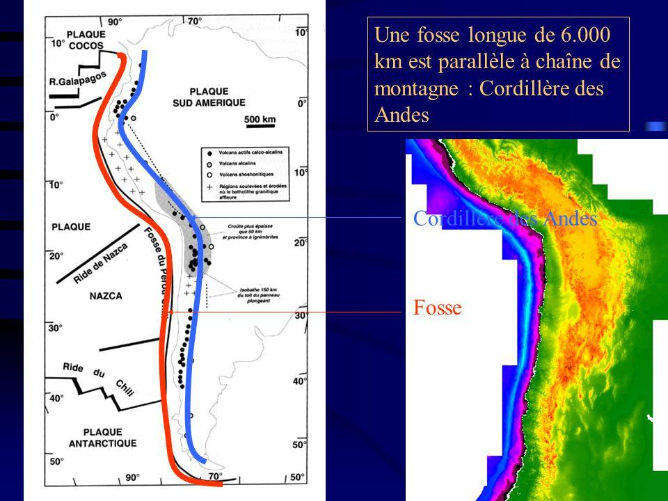 Une fosse longue de 6.000 km est parallèle à chaîne de montagne : Cordillère des Andes Cordillère des Andes Fosse