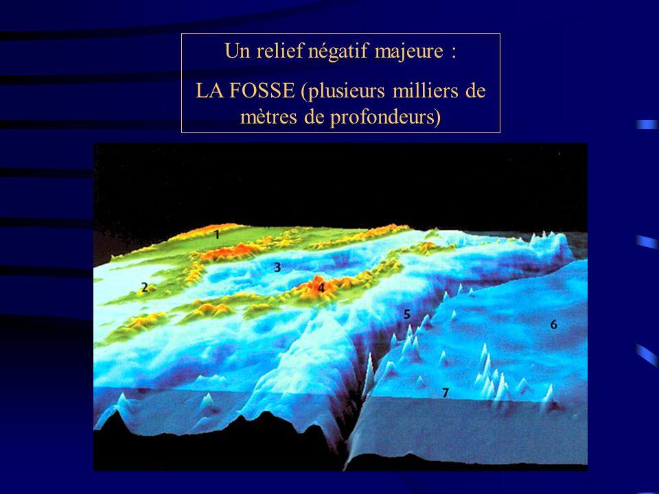 Un relief négatif majeure : LA FOSSE (plusieurs milliers de mètres de profondeurs)