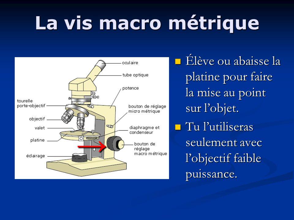 La vis macro métrique Élève ou abaisse la platine pour faire la mise au point sur l'objet.