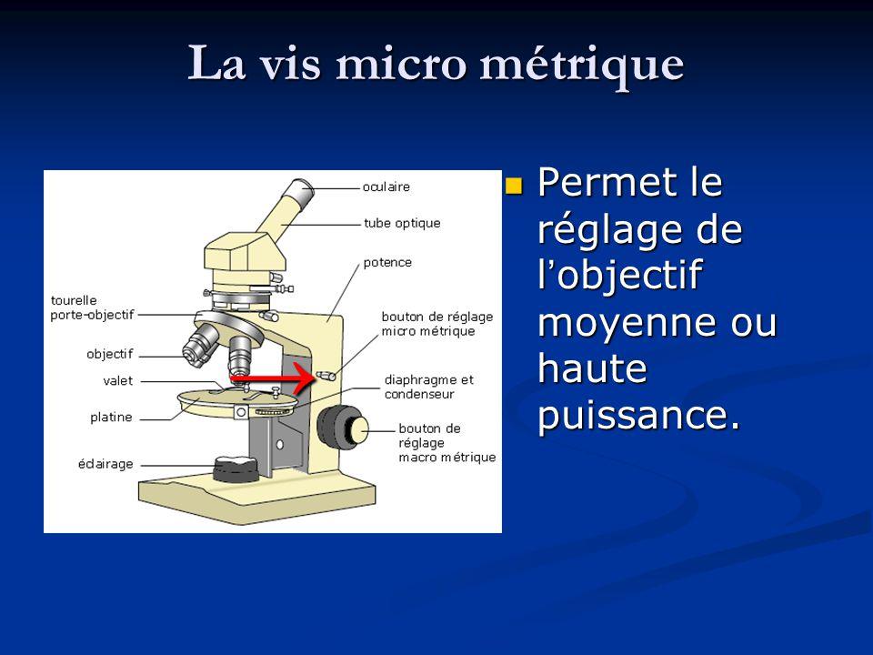 La vis micro métrique Permet le réglage de l'objectif moyenne ou haute puissance. →