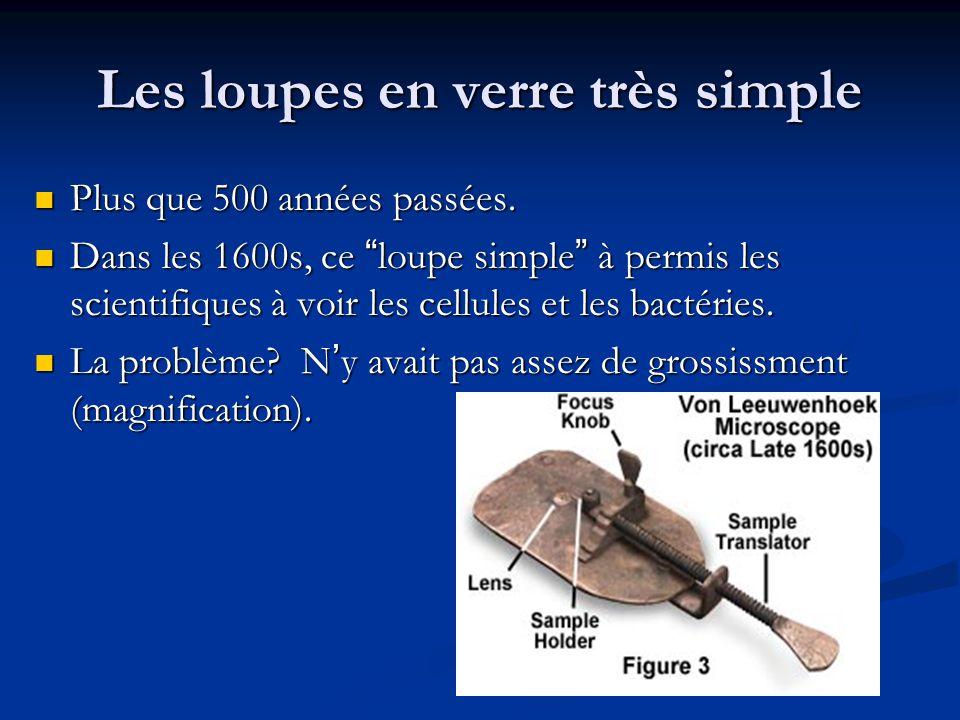 Les loupes en verre très simple Plus que 500 années passées.