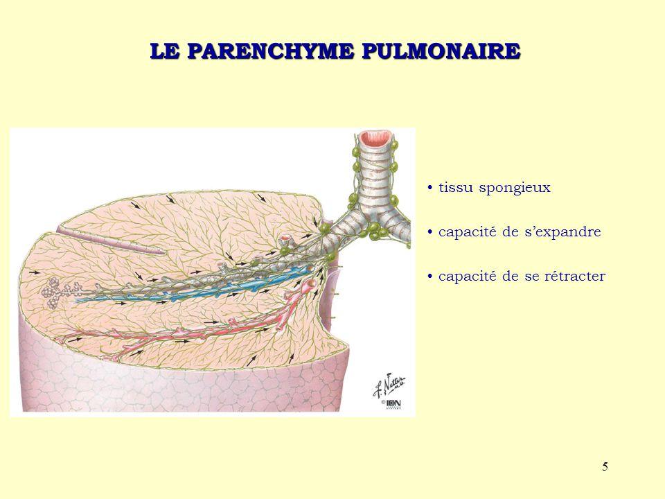 5 LE PARENCHYME PULMONAIRE tissu spongieux capacité de s'expandre capacité de se rétracter