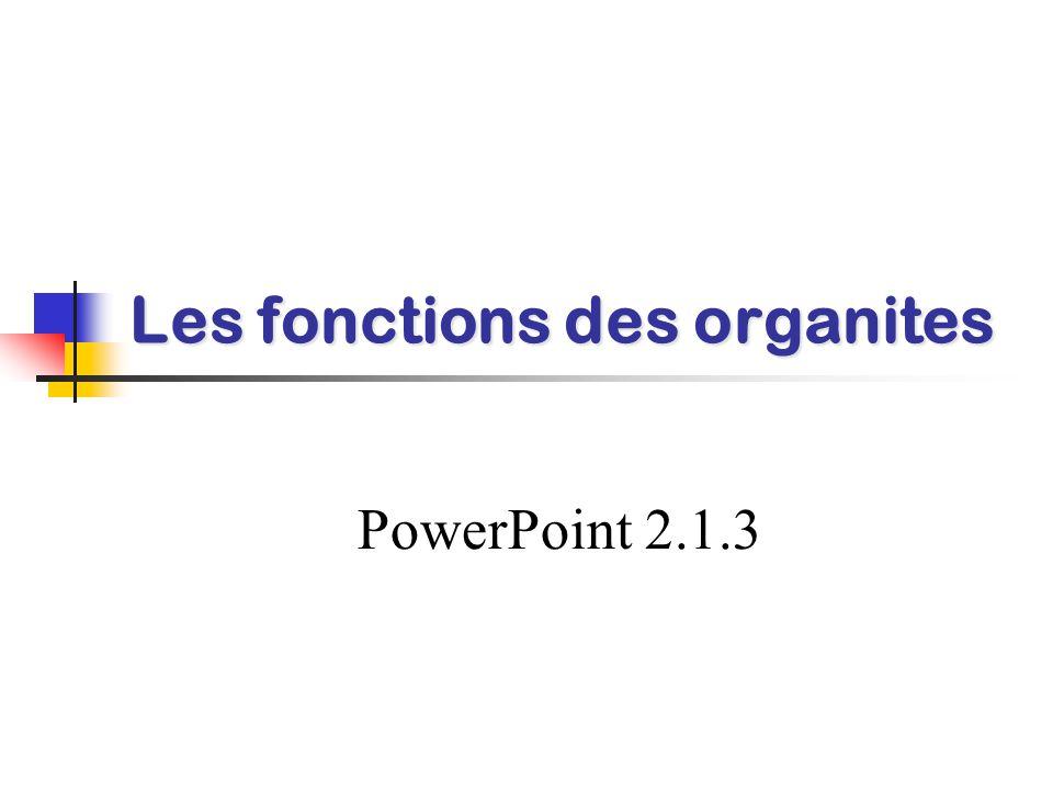 Les fonctions des organites PowerPoint 2.1.3