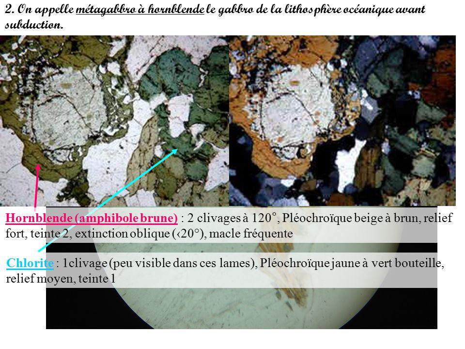 2.On appelle métagabbro à hornblende le gabbro de la lithosphère océanique avant subduction.