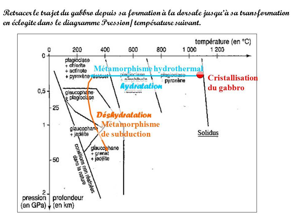 Retracer le trajet du gabbro depuis sa formation à la dorsale jusqu'à sa transformation en éclogite dans le diagramme Pression/ température suivant.