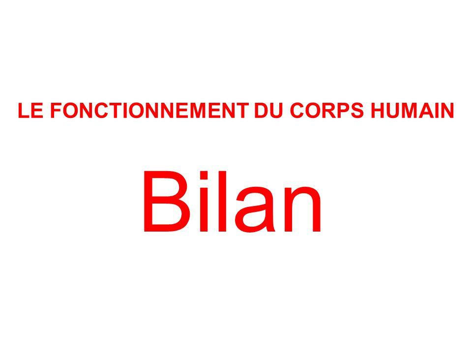 Bilan LE FONCTIONNEMENT DU CORPS HUMAIN