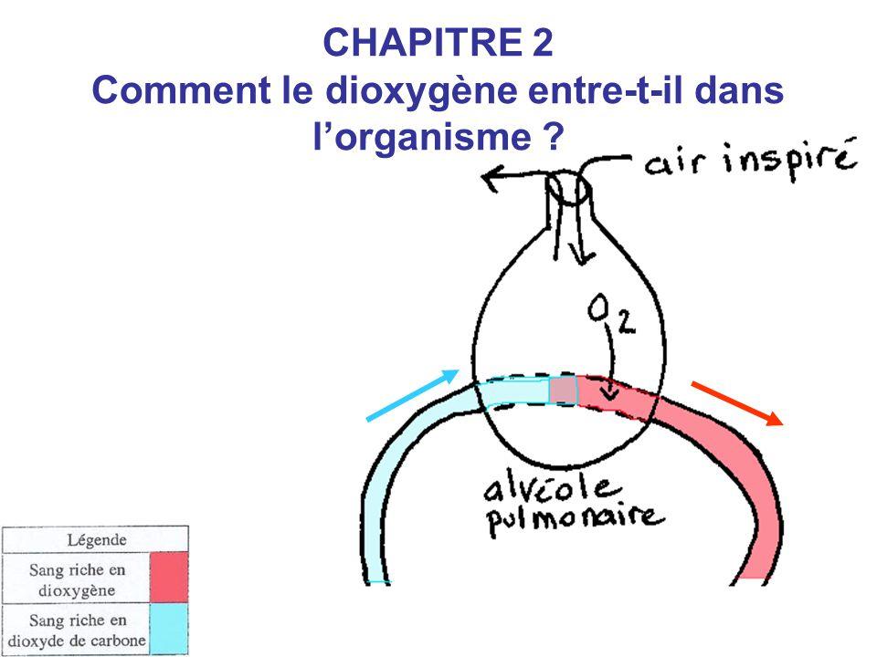 Le dioxygène passe de l'air alvéolaire dans le sang.