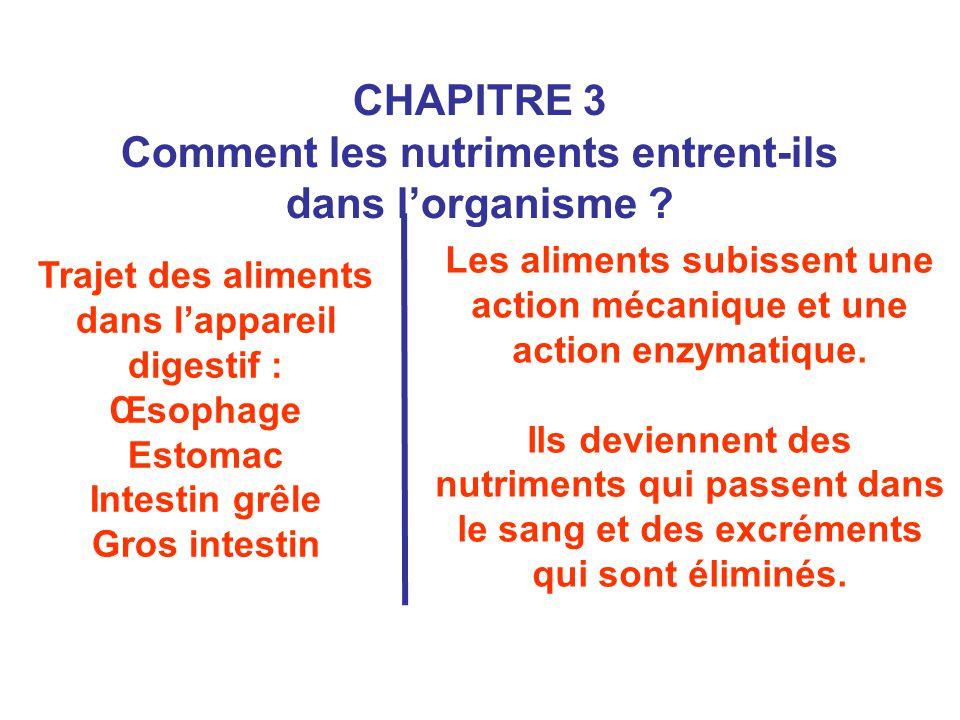 CHAPITRE 3 Comment les nutriments entrent-ils dans l'organisme ? Trajet des aliments dans l'appareil digestif : Œsophage Estomac Intestin grêle Gros i