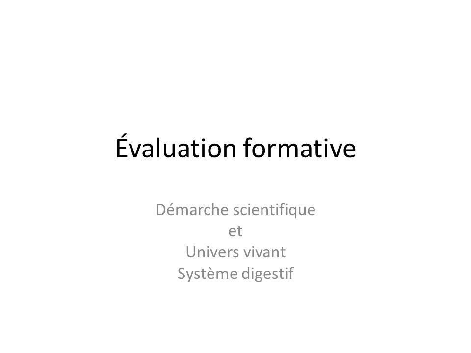 Évaluation formative Démarche scientifique et Univers vivant Système digestif