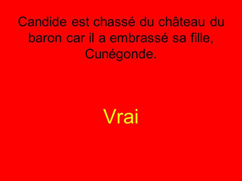 Candide est chassé du château du baron car il a embrassé sa fille, Cunégonde. Vrai
