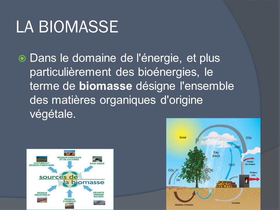 LA BIOMASSE  Dans le domaine de l énergie, et plus particulièrement des bioénergies, le terme de biomasse désigne l ensemble des matières organiques d origine végétale.