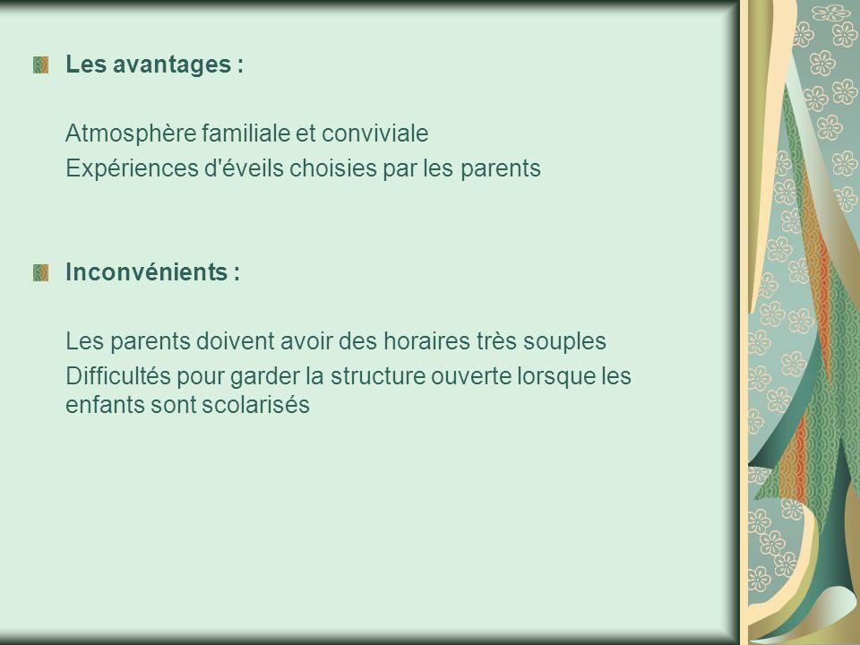 Les avantages : Atmosphère familiale et conviviale Expériences d éveils choisies par les parents Inconvénients : Les parents doivent avoir des horaires très souples Difficultés pour garder la structure ouverte lorsque les enfants sont scolarisés
