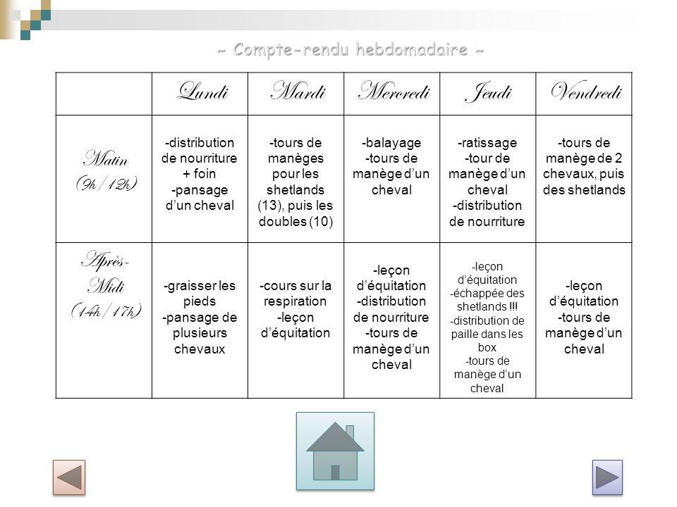 LundiMardiMercrediJeudiVendredi Matin (9h/12h) -distribution de nourriture + foin -pansage d'un cheval -tours de manèges pour les shetlands (13), puis