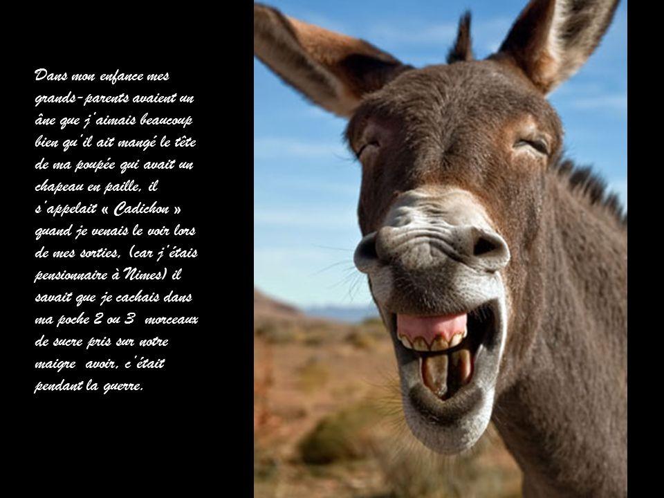 Te faut-il tirer la langue pour sourire ? Hi Hi Hi !! Le bonheur parfait.
