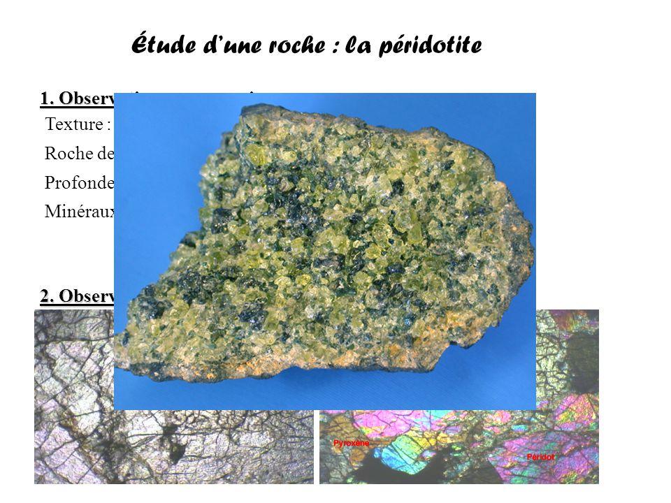 Étude d'une roche : le granite 1.Observation macroscopique 2.