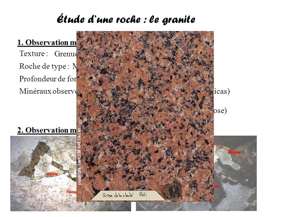Étude d'une roche : le basalte 1.Observation macroscopique 2.
