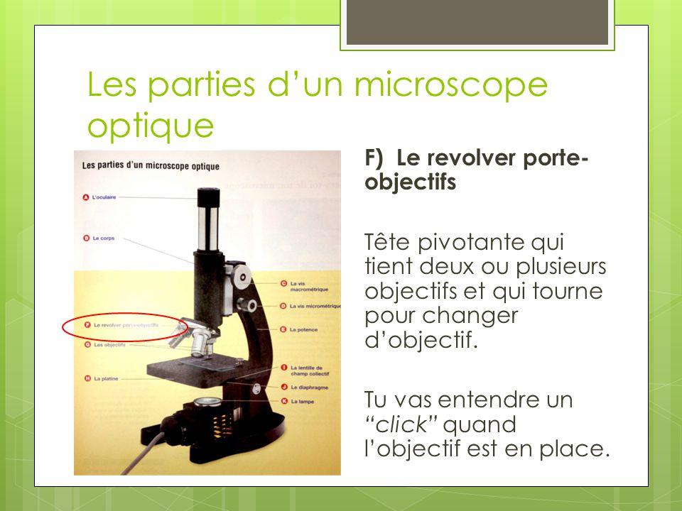 Les parties d'un microscope optique G) Les objectifs Contiennent les lentilles qui grossissent les objets.
