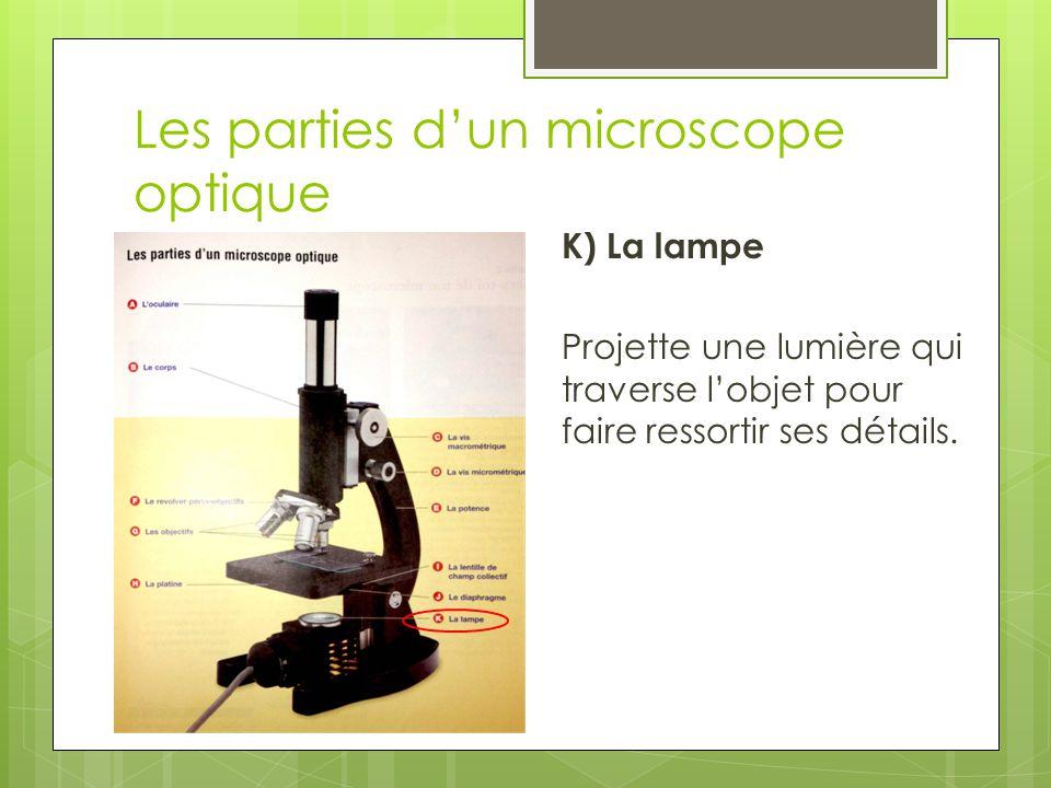 Les parties d'un microscope optique K) La lampe Projette une lumière qui traverse l'objet pour faire ressortir ses détails.