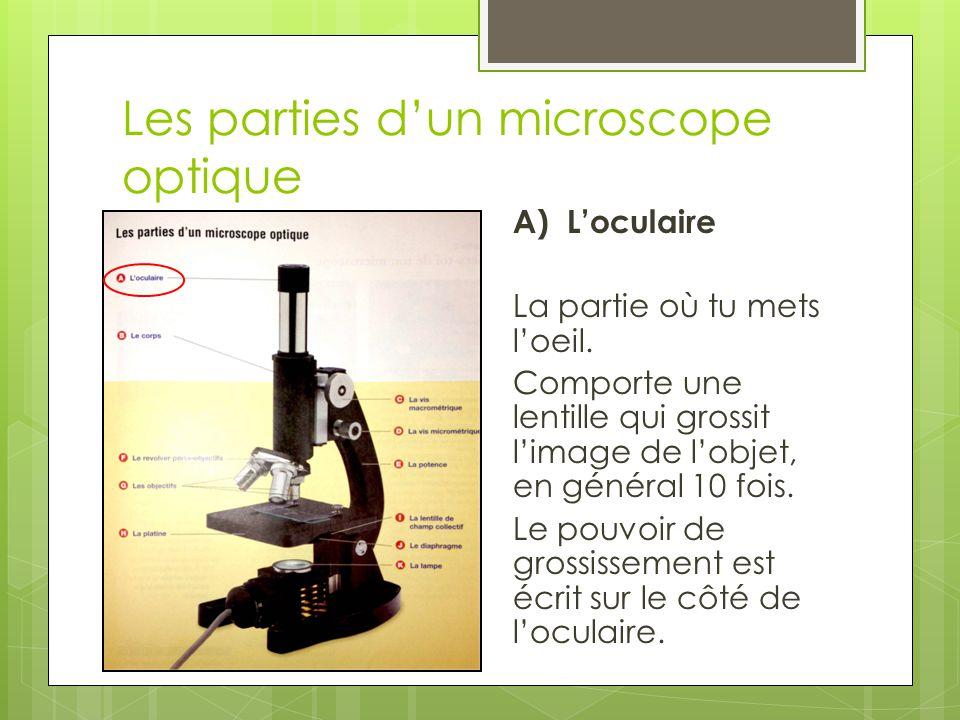 Les parties d'un microscope optique A) L'oculaire Champ de vision La surface qu'on voit en regardant dans l'oculaire d'un microscope ou d'un autre instrument d'optique.