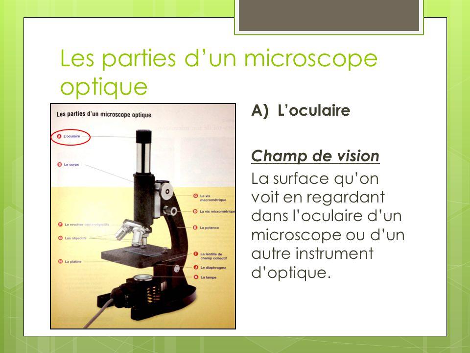 Les parties d'un microscope optique B) Le corps Maintient la distance qui convient entre l'oculaire et l'objectif.