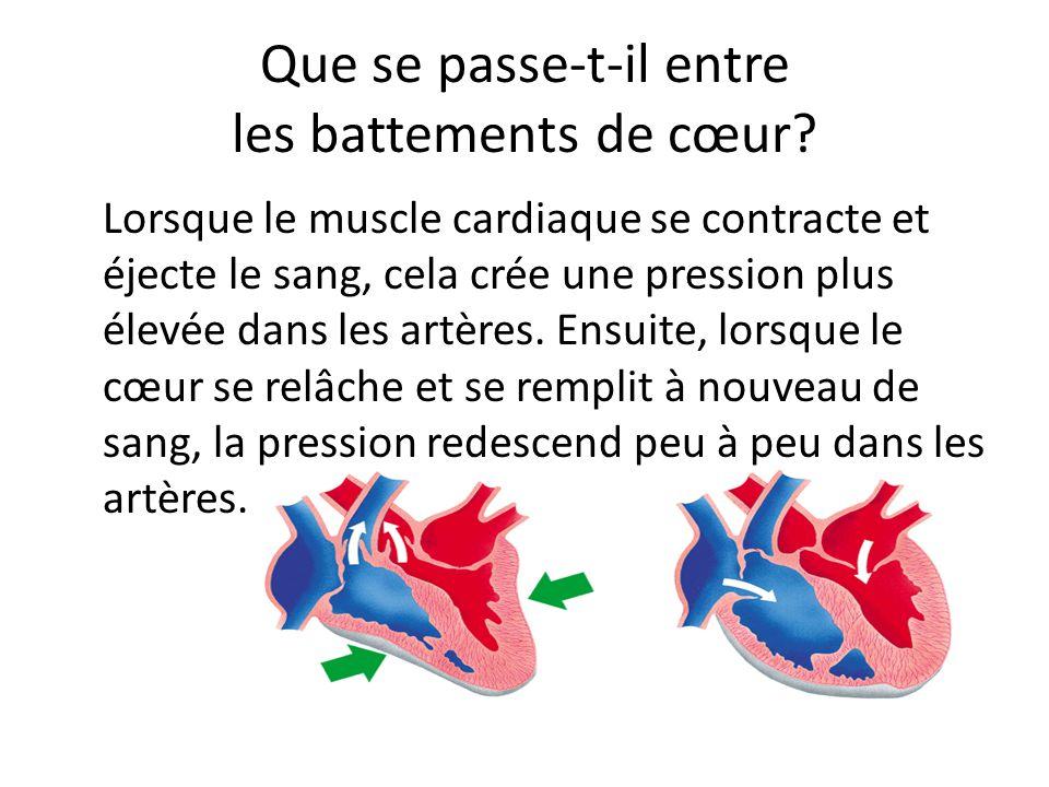Que se passe-t-il entre les battements de cœur.