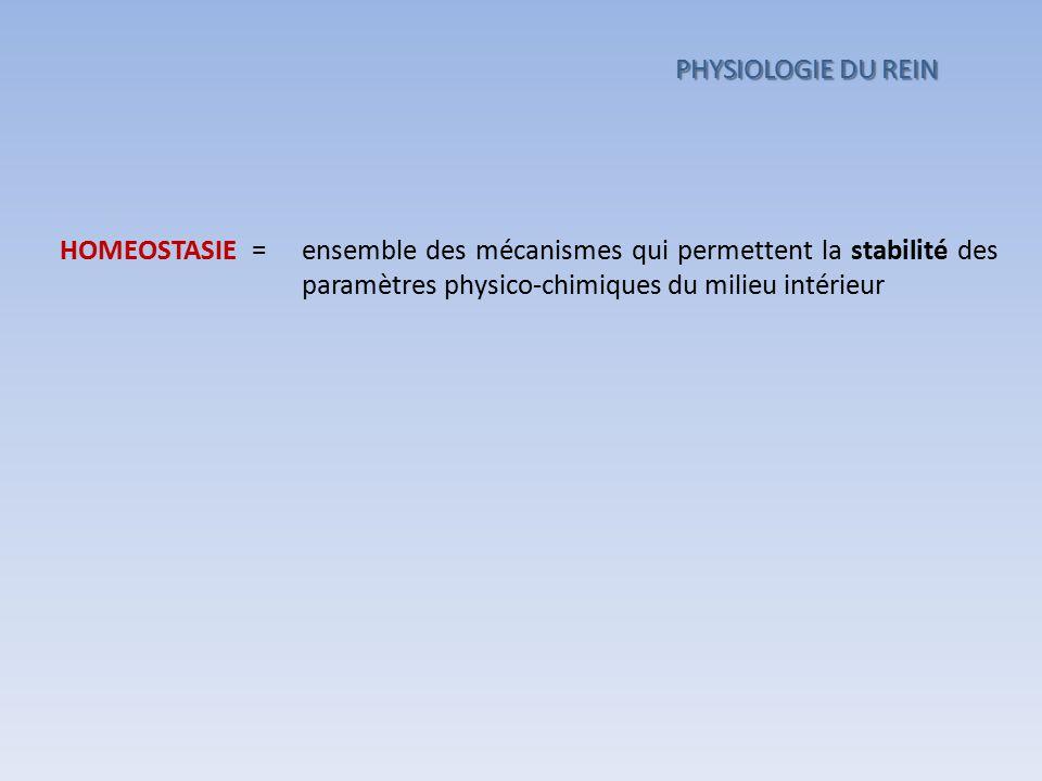 ensemble des mécanismes qui permettent la stabilité des paramètres physico-chimiques du milieu intérieur HOMEOSTASIE = PHYSIOLOGIE DU REIN