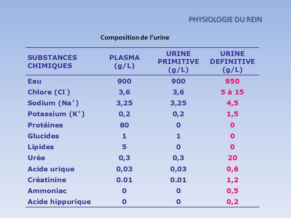 Composition de l'urine