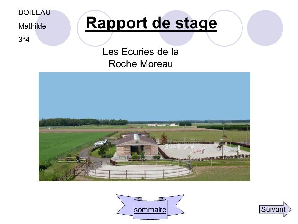 BOILEAU Mathilde 3°4 Les Ecuries de la Roche Moreau Rapport de stage sommaire Suivant