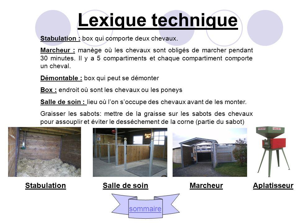 Lexique technique Stabulation : box qui comporte deux chevaux.