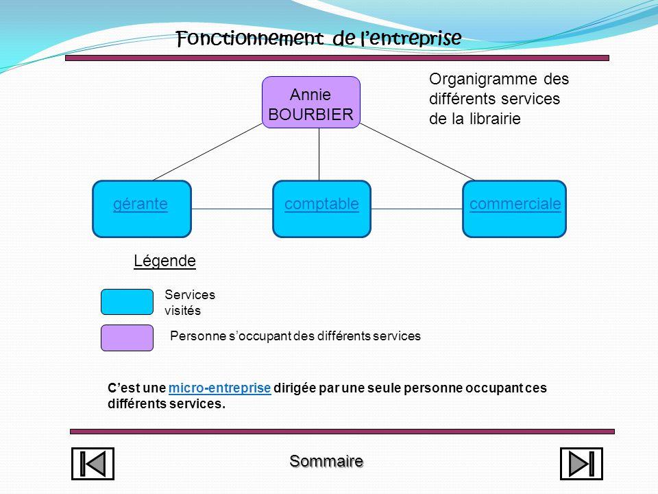 Sommaire Annexe Observation et présentation du métier Le libraire est l'intermédiaire entre le diffuseur, le distributeur ou l'éditeur dans le cas où celui-ci ne passerait pas par le diffuseur et le client (voir annexe).
