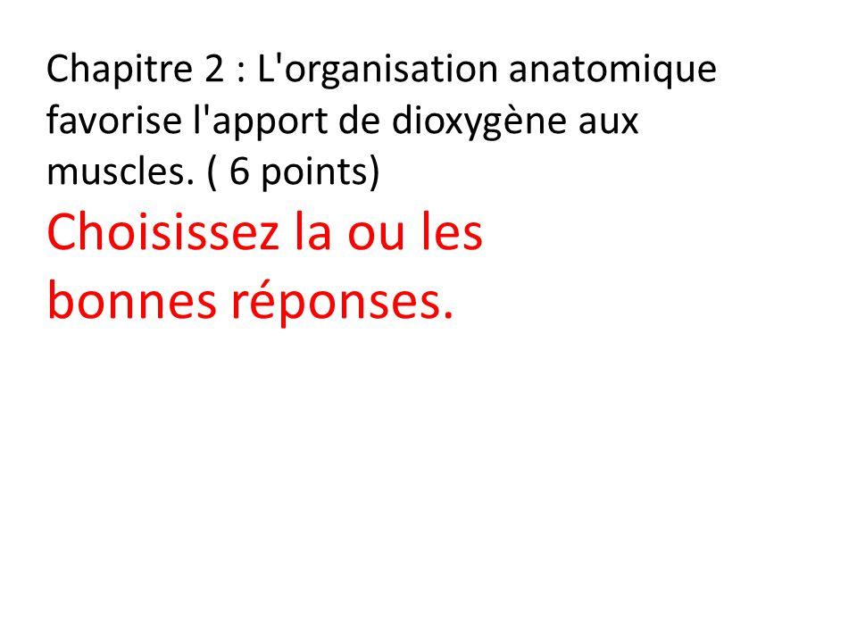 Chapitre 2 : L'organisation anatomique favorise l'apport de dioxygène aux muscles. ( 6 points) Choisissez la ou les bonnes réponses.
