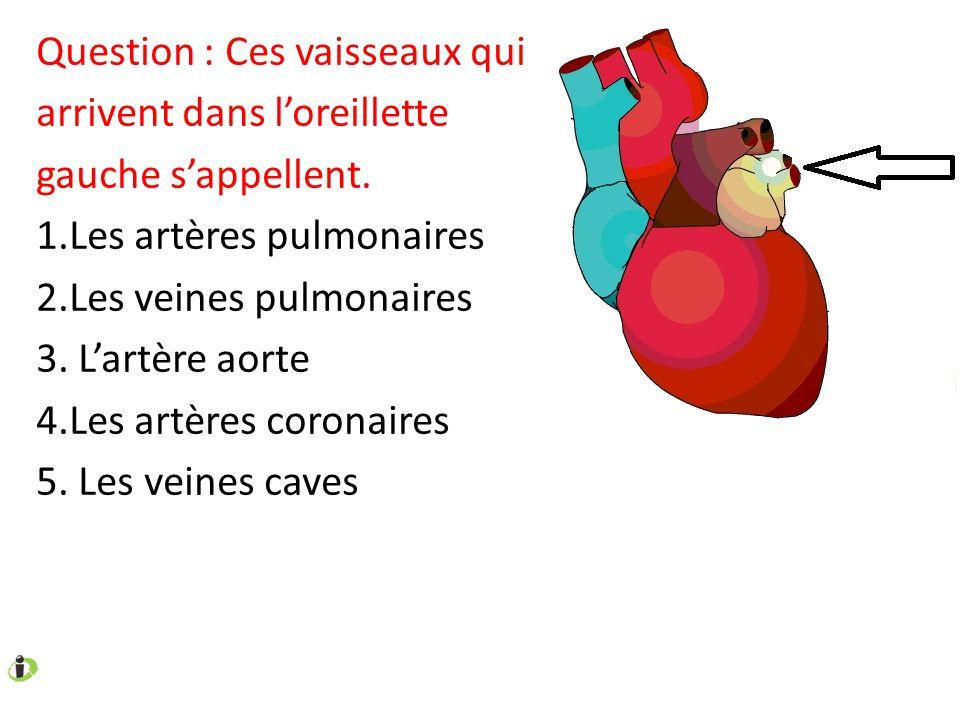 Question : Ces vaisseaux qui arrivent dans l'oreillette gauche s'appellent. 1.Les artères pulmonaires 2.Les veines pulmonaires 3. L'artère aorte 4.Les