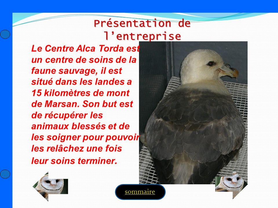 Le Centre Alca Torda est un centre de soins de la faune sauvage, il est situé dans les landes a 15 kilomètres de mont de Marsan. Son but est de récupé