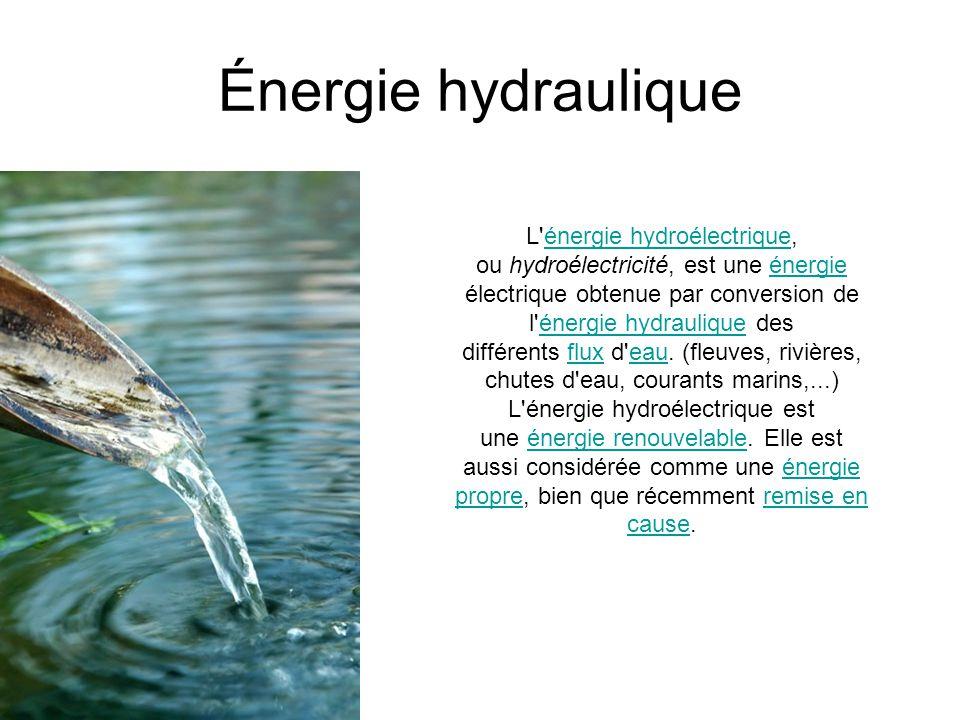 Lexique Photosynthèse : synthèse des glucides réalisée parles végétaux qui utilisent la lumière comme source d énergie.