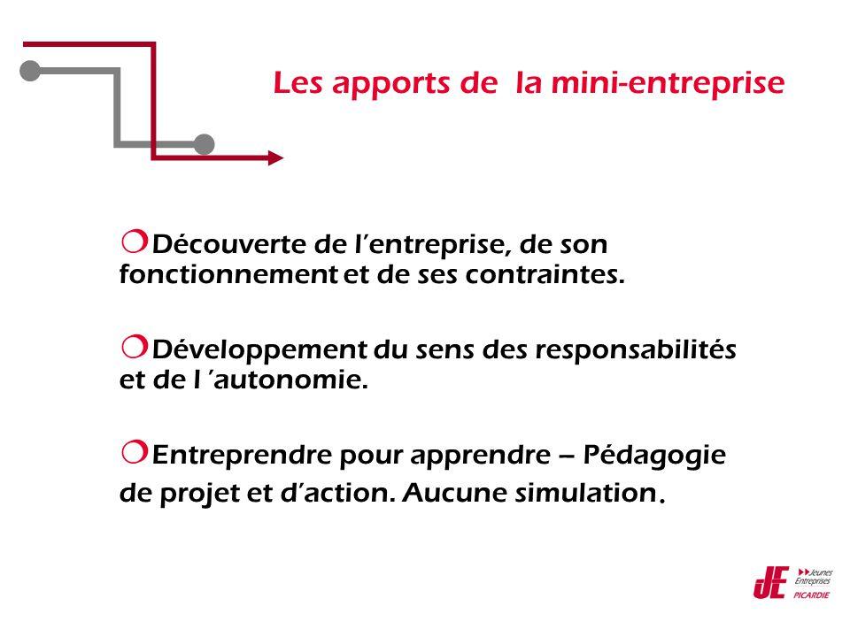 Les apports de la mini-entreprise  Découverte de l'entreprise, de son fonctionnement et de ses contraintes.