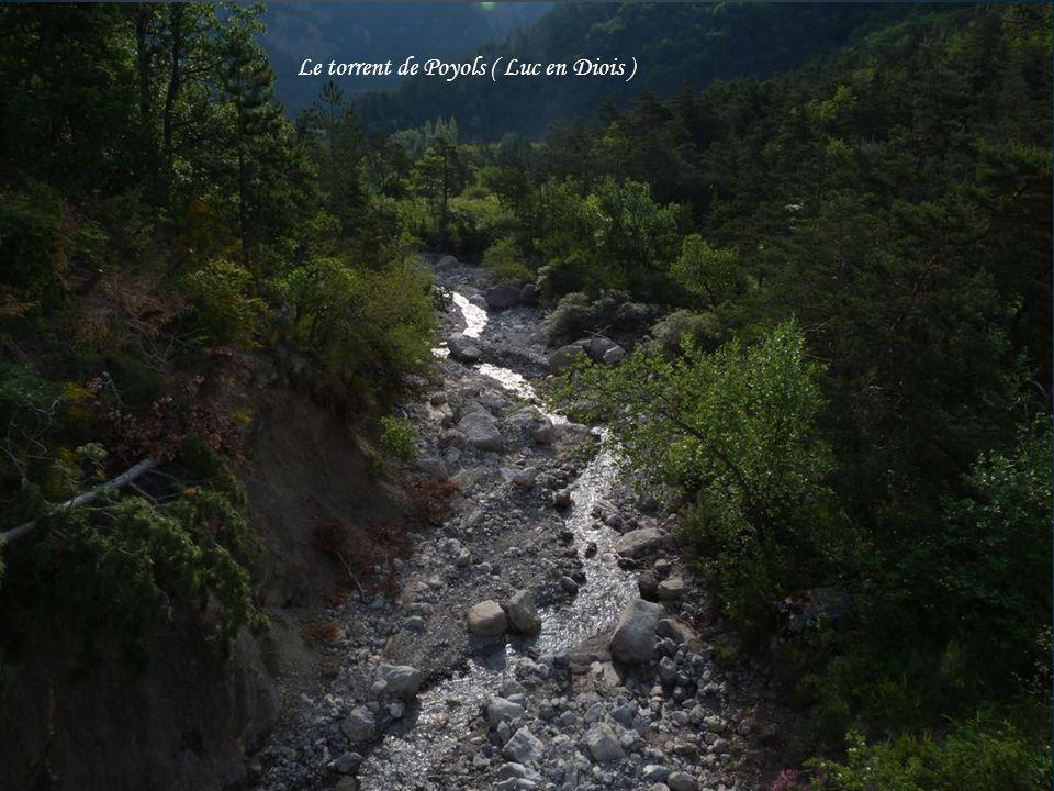 Aux gorges d'Ombléze naissance de la cascade de la pissoire
