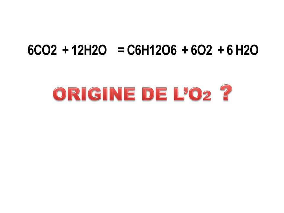 6CO2 + 12H2O = C6H12O6 + 6O2 + 6 H2O