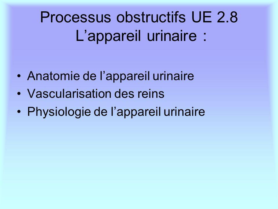 Processus obstructifs UE 2.8 L'appareil urinaire : Anatomie de l'appareil urinaire Vascularisation des reins Physiologie de l'appareil urinaire