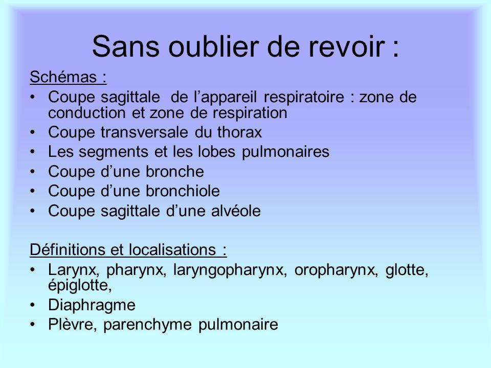 Sans oublier de revoir : Schémas : Coupe sagittale de l'appareil respiratoire : zone de conduction et zone de respiration Coupe transversale du thorax
