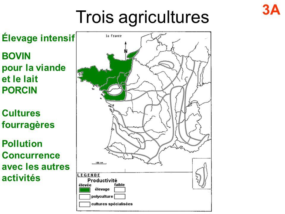 3A Élevage intensif BOVIN pour la viande et le lait PORCIN Cultures fourragères Pollution Concurrence avec les autres activités