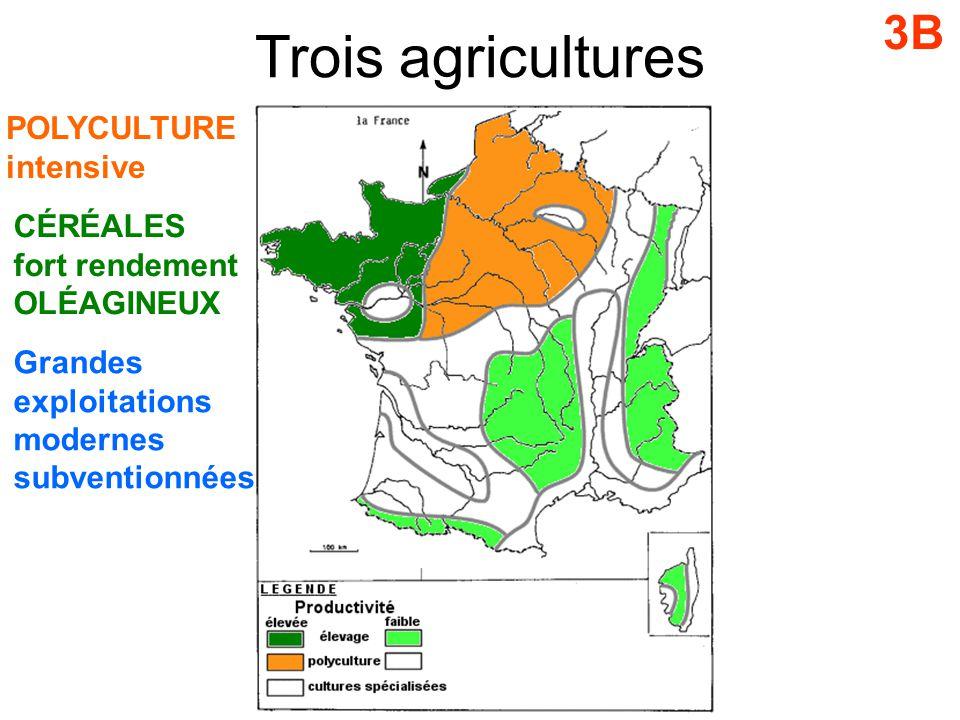 Trois agricultures 3B POLYCULTURE intensive CÉRÉALES fort rendement OLÉAGINEUX Grandes exploitations modernes subventionnées